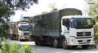 Dịch vụ vận tải hàng hoá